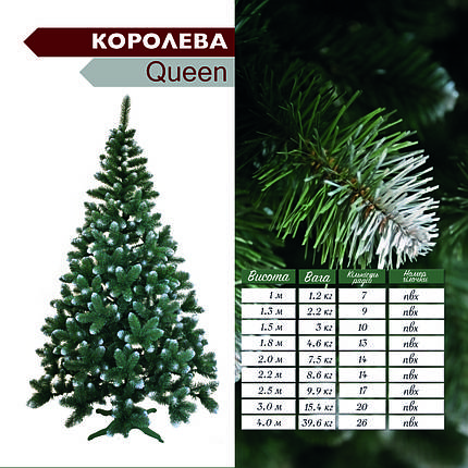 "Штучна ялинка(сосна) ""Queen"" з білим напиленням 1.8 метра(королева), фото 2"