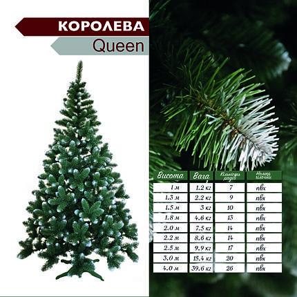 """Искуственная ель(сосна) """"Queen""""(королева) с белым напылением 1.8 м, фото 2"""