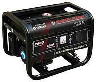 Бензиновый генератор ENERGY POWER 2500 на 2,5 кВт 220V