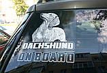 Наклейка на машину/авто Немецкий дог на борту (с некупированными ушами) (Great Dane on Board), фото 3