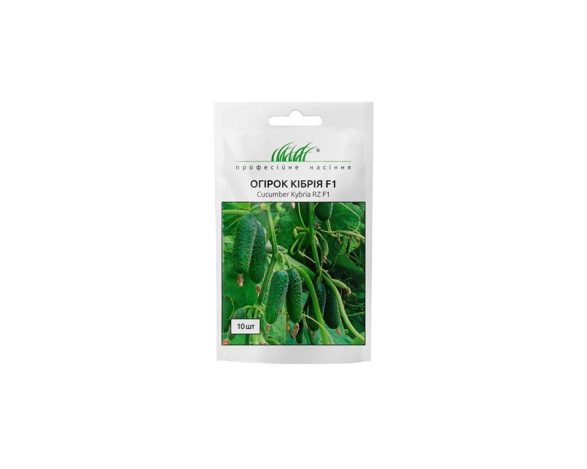 Кибрия F1 семена огурцы, 10 семян — партенокарпический, ранний, Rijk Zwaan