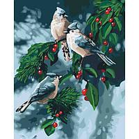 Новогодняя Картина по номерам Зимние птички 40х50. Идейка (зима/рождество/новый год)