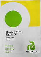 Семена огурца Пучини F1 (Puccini F1), 10 г партенокарпический корнишон, Rijk Zwaan