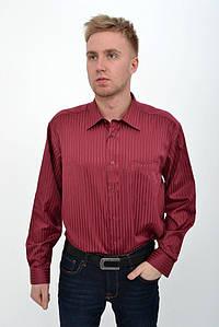 Рубашка 50PD0714-1 цвет Вишневый