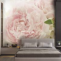 """Фотообои с цветами """"Розовый пион"""""""