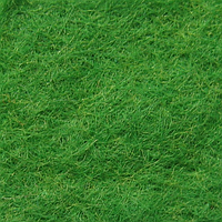 Фетр натуральный 1.3 мм, 20x30 см, ИРЛАНДСКИЙ ЗЕЛЕНЫЙ, фото 1