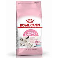 Сухой корм Royal Canin Mother and Babycat для кормящих кошек, 10 кг