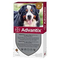 Капли от блох и клещей Bayer Advantix для собак весом 40-60 кг, цена за 1 пипетку
