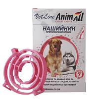 Ошейник противопаразитный AnimAll VetLine для собак, коралловый, 70 см