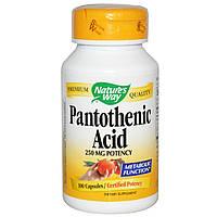 Пантотеновая кислота, Pantothenic Acid, Nature's Way, 250 мг, 100 капсул