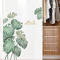 """Виниловые наклейки на стену, окна, двери """"зеленые листья папоротника"""" 80см*108см (лист 60*90см)"""