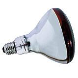 Лампа инфракрасная BR38 175 Вт красн. BS, фото 3