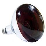 Лампа инфракрасная R125 100 Вт красн. LO, фото 2
