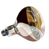 Лампа инфракрасная R125 100 Вт бронза LO, фото 2