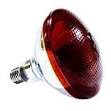 Лампа инфракрасная BR38 100 Вт красн. окраш. LO, фото 2