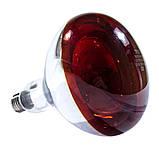 Лампа инфракрасная R125 100 Вт красн. окраш. LO, фото 2
