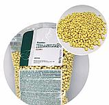 Xanitalia воск в гранулах с Аргановым маслом 1 кг, фото 2