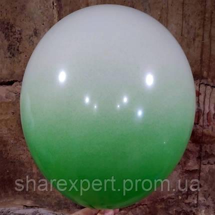 Зелено/Белые латексные шары ОМБРЕ, фото 2