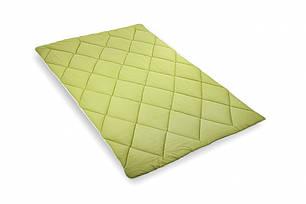 Одеяло ТЕП Alaska зимнее 200х210 евро, фото 2