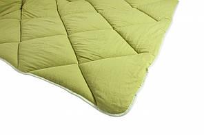 Одеяло ТЕП Alaska зимнее 200х210 евро, фото 3