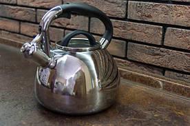 Чайник 2,8л из нержавеющей стали со свистком и бакелитовой ручкой Kamille 0674
