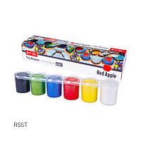 Набор красок для рисования по камню/бетону, 6 цветов RS6T [kra143915-TSI]