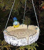 Кормушка для птиц синичка на березе и синичка на сосне, фото 3