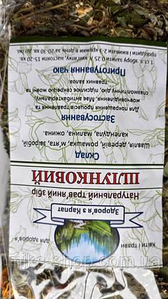 Фіточай Шлунковий, фото 2