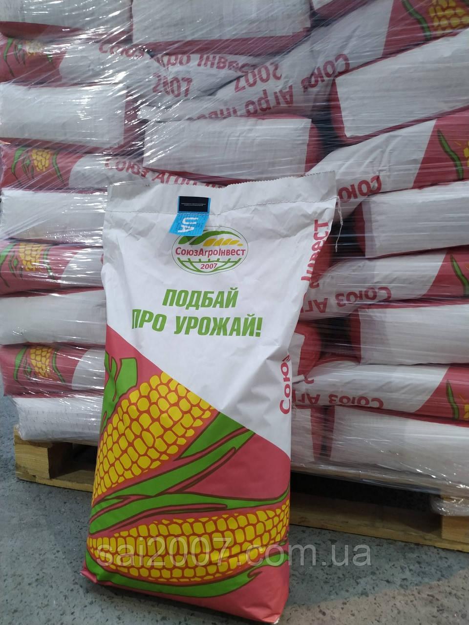 Семена кукурузы Пивиха
