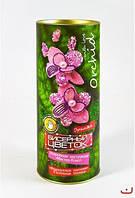 """Подарочный набор. Бисерный цветок """"Орхидея"""""""