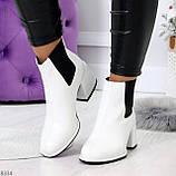 Роскошные светлые светлые молочные женские ботинки ботильоны на удобном каблуке, фото 6