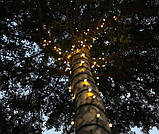 Гирлянда Клип-лайт 100 м, 1000 теплых белых LED ламп, черный ПВХ, IP64, теплый белый, фото 3