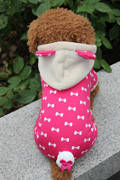 """Kомбинезон  для собак """"Кролик Банни"""", размеры S, M, L, малиновый, фото 2"""