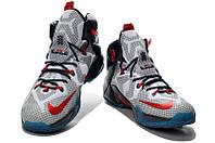Баскетбольные кроссовки Nike Lebron 12  N-10491-97