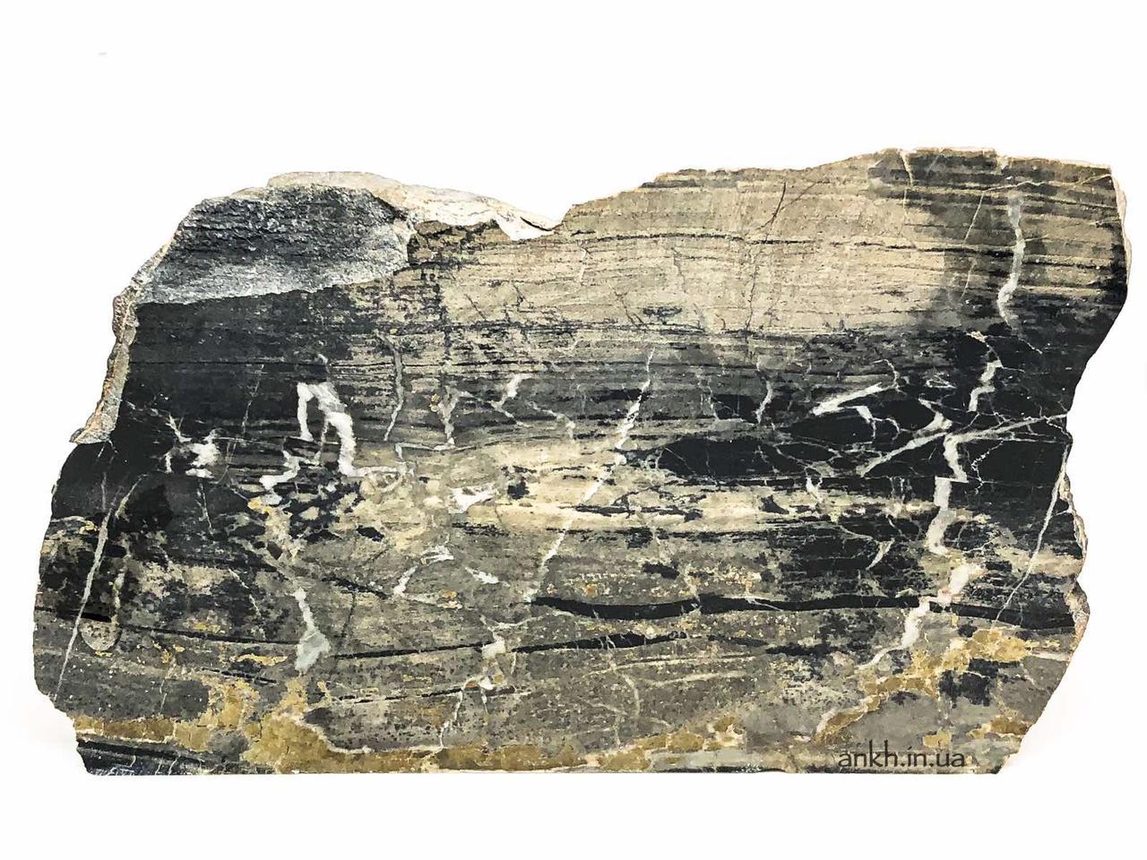 Окаменелое дерево (4), 525 г