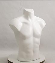Стас PN2 (белый) (032) для треноги, фото 2