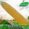 Сахарная кукуруза Дейнерис (Барселона)  Мнагор 100 000 семян на 1.5га, ультраранние семена сладкой кукурузы