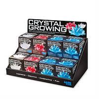Стенд 4M для 12 наборов серии Crystal Growing (00-05018)