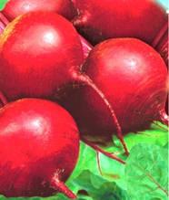 Семена свеклы Красный шар (имп.)