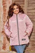 Куртки жіночі великих розмірів 48+