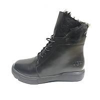 Ботинки женские оригинал УГГ ( UGG Boots Leather Black )