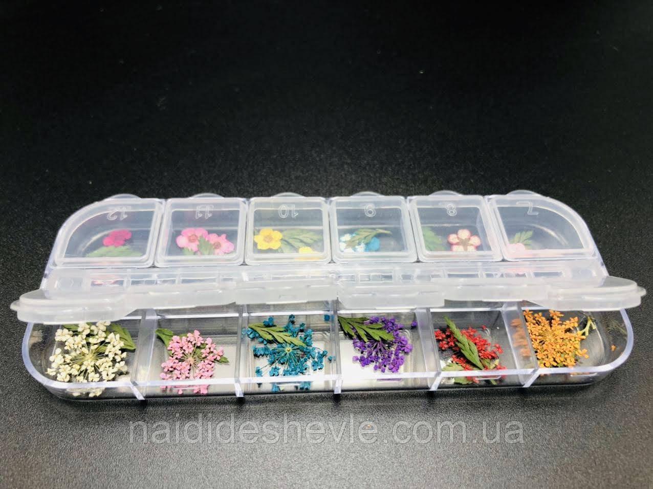 Сухоцветы для дизайна ногтей, 12 шт.