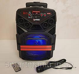 Колонка портативная акустическая  Kimiso QS-822 с микрофоном (USB/BT/FM)