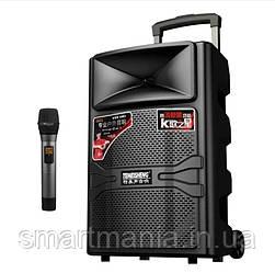 Колонка акумуляторная с микрофоном TMS A12-44 (USB/Bluetooth)