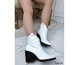 Зимние ботинки казаки питон, фото 3