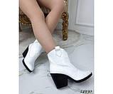 Зимние ботинки казаки питон, фото 5