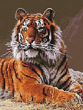 Алмазная вышивка (мозаика) 30x40 см Величественный тигр Rainbow Art