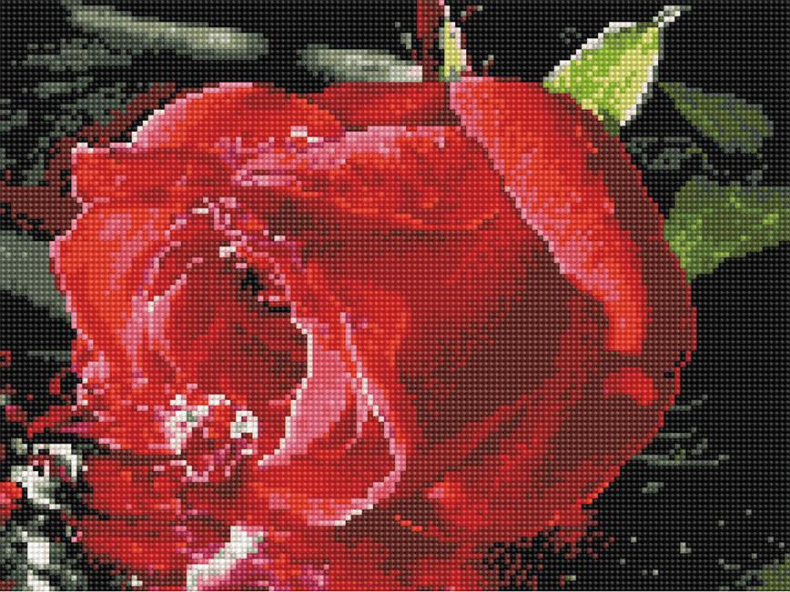 Алмазна вишивка (мозаїка) 30x40 см Червона троянда Rainbow Art