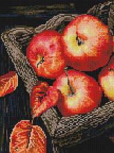 Алмазная вышивка (мозаика) 30x40 см Осенний урожай Rainbow Art
