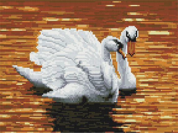 Алмазная вышивка (мозаика) 30x40 см Лебеди на закате Rainbow Art, фото 2